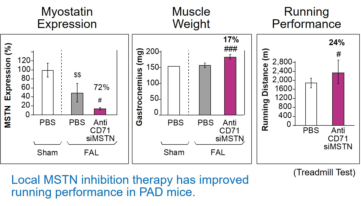 Phenotypic Changes in PAD mice